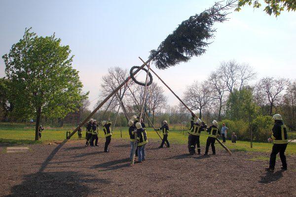 2011-Maibaum stellen-02